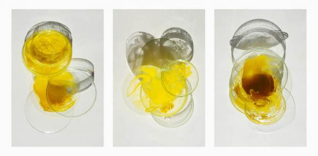 photo of Jean-Louis Garnell (2012) Transparent glasforms with yellow, brown colors